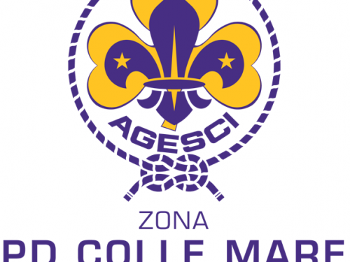 Approvato il nuovo progetto di Zona 2020